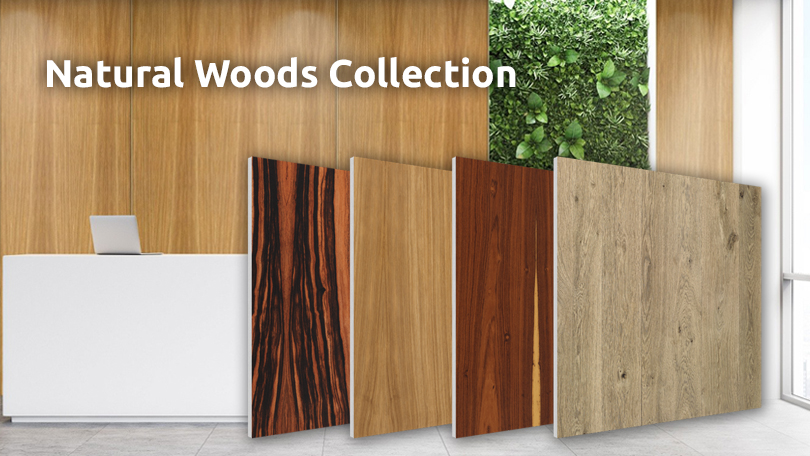 Flat Panel VMT Woods Collection
